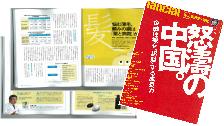 フィナンシャルジャパン(2008年12月25日付)